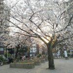 【新御徒町駅】竹町公園の休憩場所