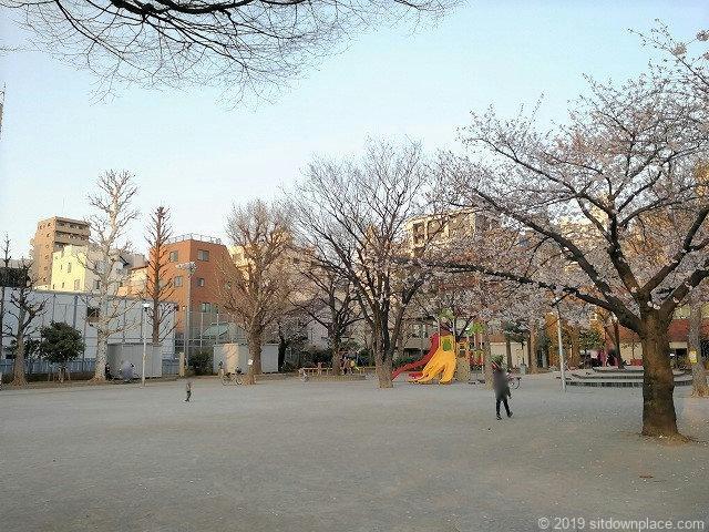 竹町公園の広場