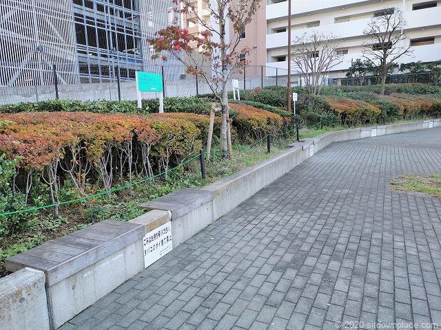 川崎駅堀川町公園のベンチ