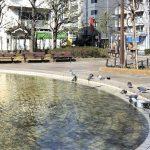 【錦糸町駅】大横川親水公園の休憩場所