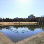 【多摩センター駅】多摩中央公園の休憩場所