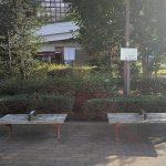 【二子玉川駅】けやき緑地の休憩場所