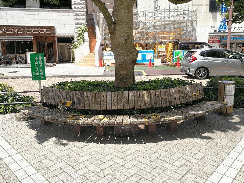 浜松駅エクセル浜松前通りの木製ベンチ