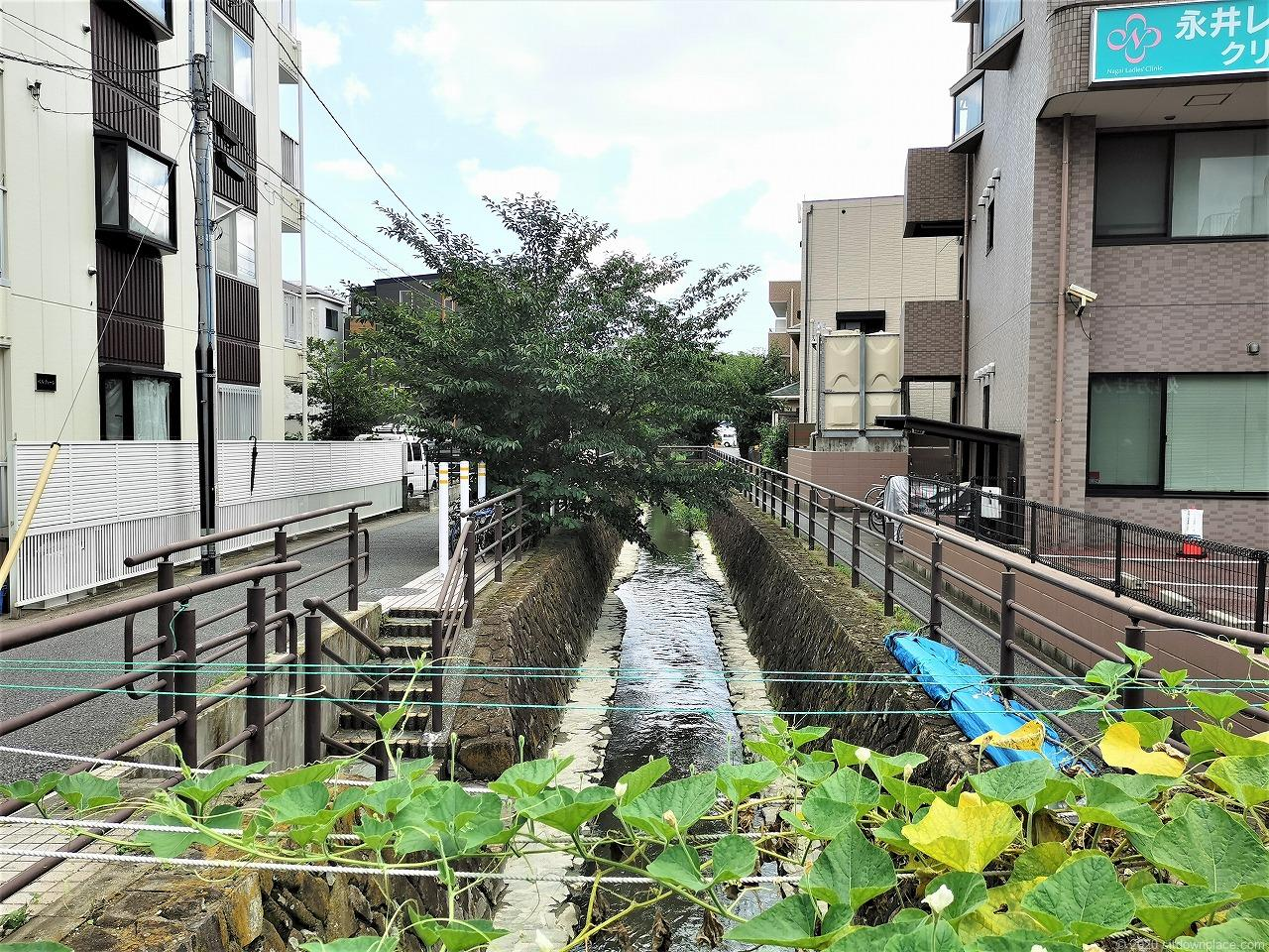 武蔵小杉駅 今市橋にかっぱ君前の外観1