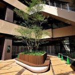【武蔵小杉駅】コスギサードアベニュー センタースクエアの休憩場所