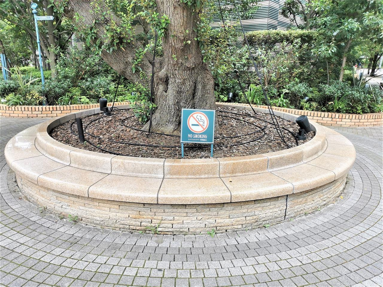 武蔵小杉駅 ミッドスカイタワー グランツリー前の円形ベンチ