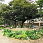 【武蔵小杉駅】ミッドスカイタワー 波紋の広場の休憩場所