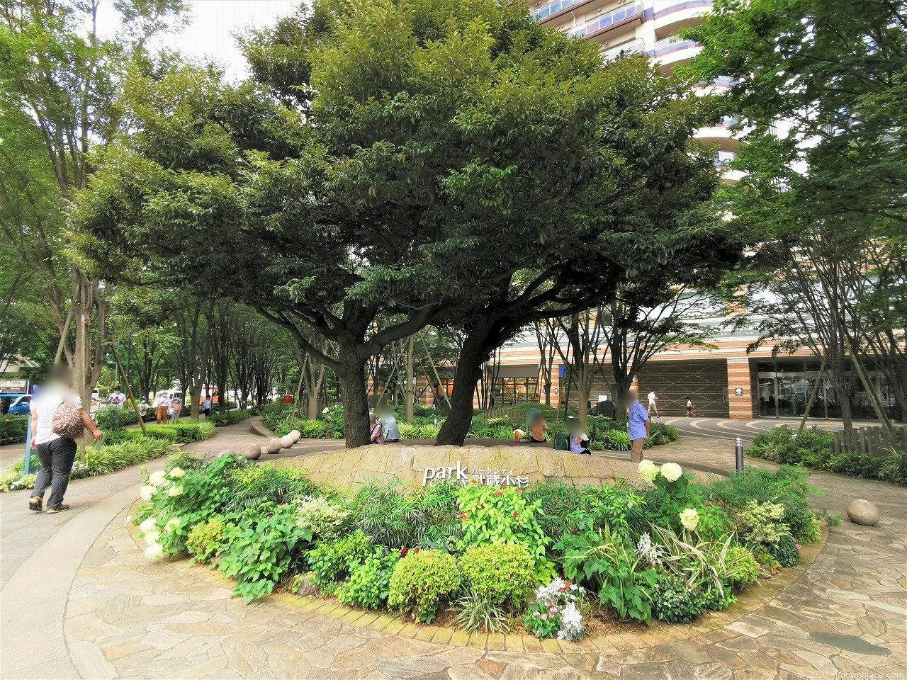武蔵小杉 ミッドスカイタワー 波紋の広場の外観