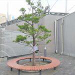 【東武宇都宮駅】オリオンスクエアの休憩場所