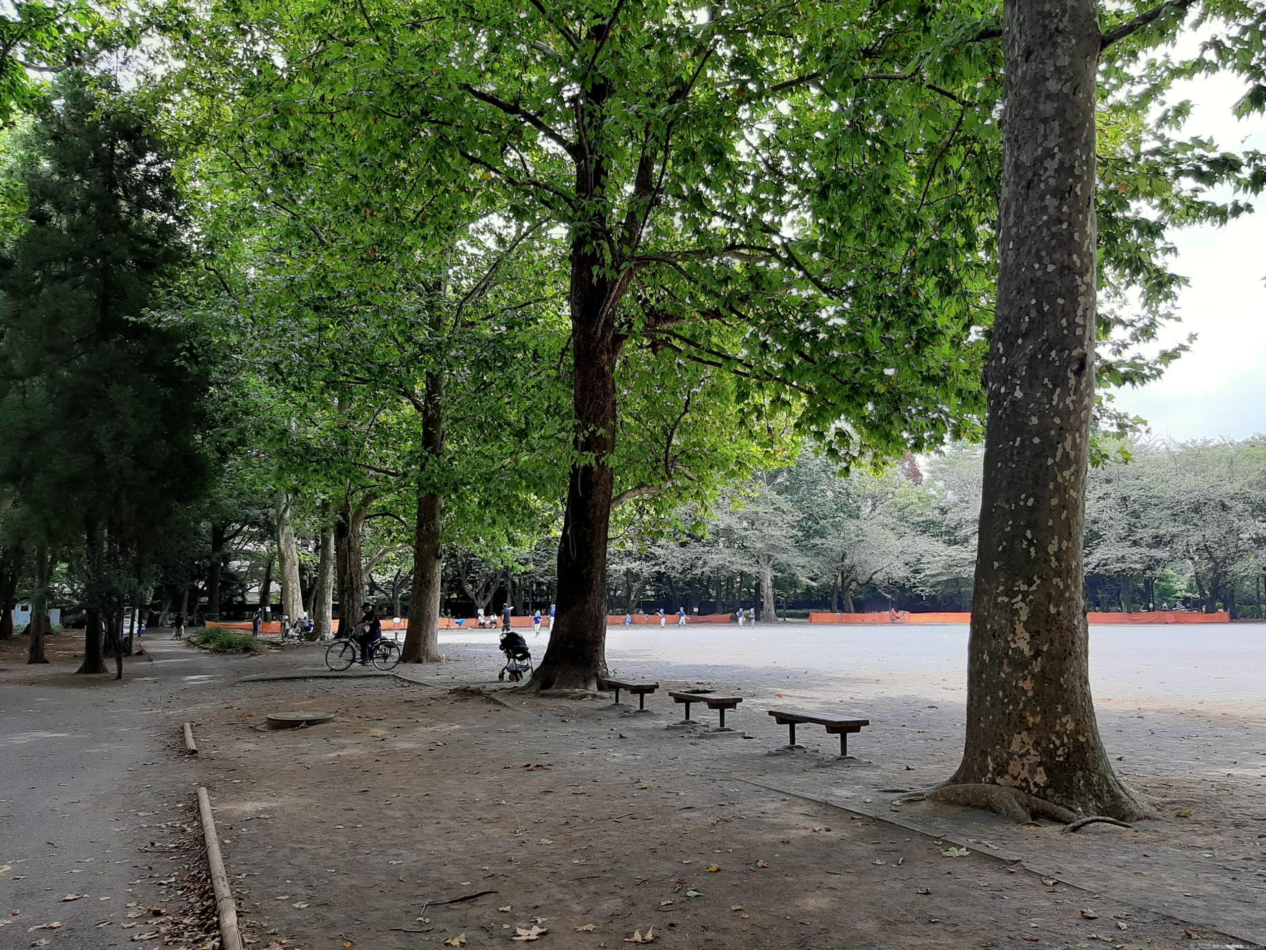 林試の森公園のベンチ