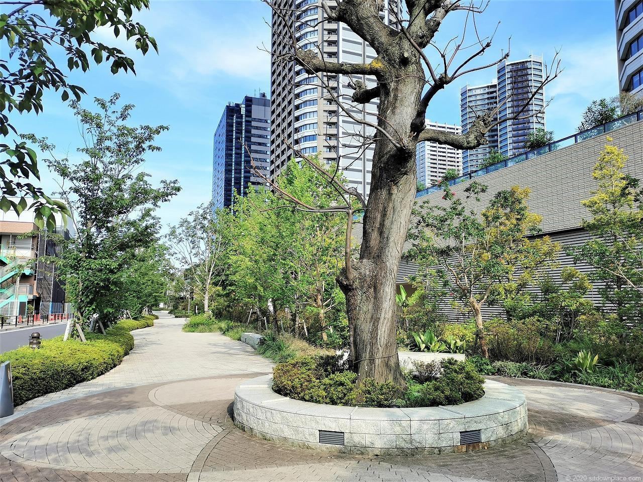 武蔵小杉駅 パークシティ ザ・ガーデン 屋上広場の外観2