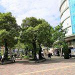 【水道橋駅】東京ドームシティ ミーツポート前広場の休憩場所