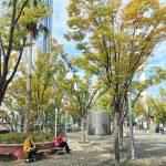 【水道橋駅】東京ドームシティ ミーツポートガーデンの休憩場所