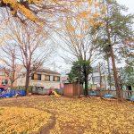 【千歳船橋駅】稲荷森稲荷神社の休憩場所