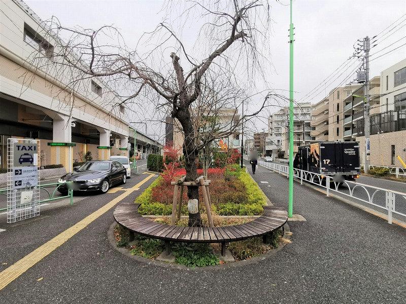 千歳船橋駅 南口タクシー乗り場付近の休憩場所