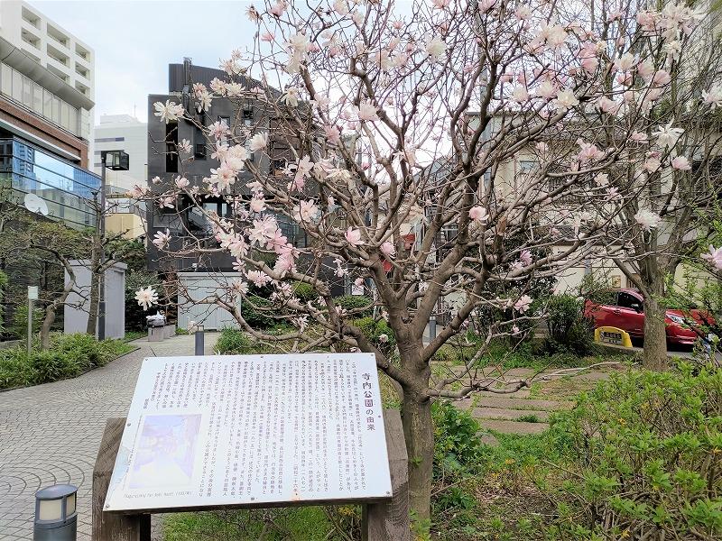 神楽坂駅 寺内公園の外観2