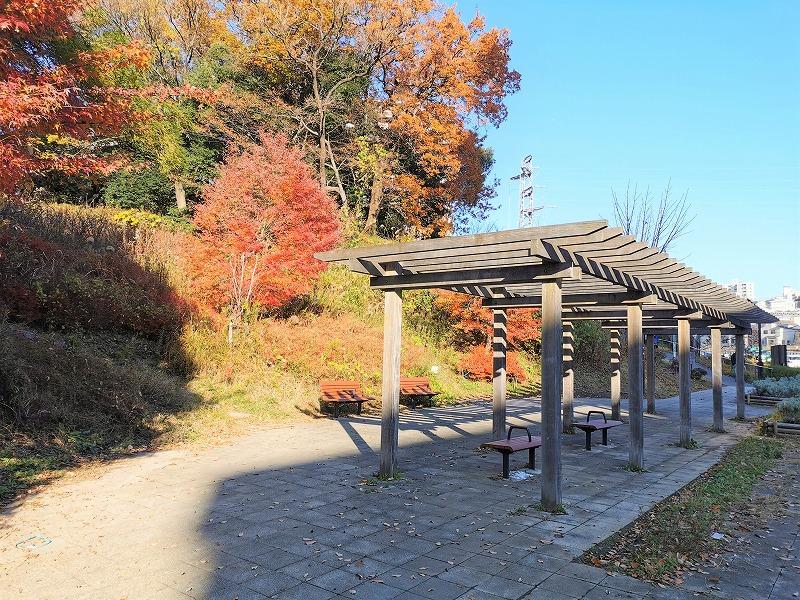 新百合ヶ丘駅 万福寺おやしろ公園 みんなの丘の休憩場所2
