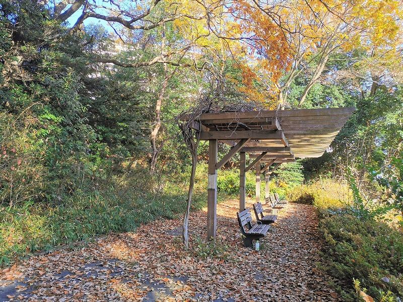 新百合ヶ丘駅 万福寺おやしろ公園 みんなの丘の休憩場所4