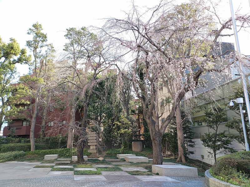 恵比寿駅プライムスクエアの桜の木の近くの休憩場所
