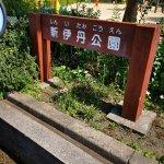 【新伊丹駅】新伊丹公園の休憩場所